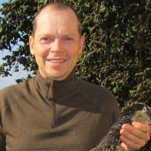Goose killer's profilbillede